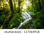 Waterfall In Hill Evergreen...