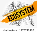 ecosystem word cloud ... | Shutterstock .eps vector #1173712432