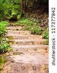 Stairway To Jungle  National...