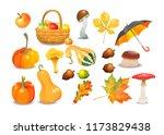 set of autumn objects. pumpkins ... | Shutterstock .eps vector #1173829438