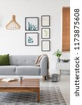 posters on a wall in a living... | Shutterstock . vector #1173875608