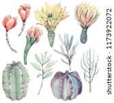 watercolor vintage succulents... | Shutterstock . vector #1173922072
