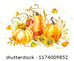 pumpkins composition. hand... | Shutterstock . vector #1174009852