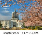 cherry blossoms in front of the ... | Shutterstock . vector #1174213525