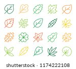 organic leaf thin line icons... | Shutterstock .eps vector #1174222108