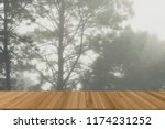 fog and mist in pine tree... | Shutterstock . vector #1174231252