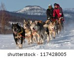 Race On A Dog Team In Russia O...