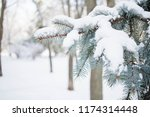 winter background. christmas... | Shutterstock . vector #1174314448