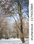winter city park.tree branches... | Shutterstock . vector #1174315885