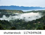 forested mountain valley in the ...   Shutterstock . vector #1174349638