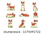 set of cartoon red haired corgi ... | Shutterstock .eps vector #1174391722