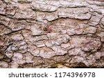 tree bark texture on firewood.... | Shutterstock . vector #1174396978