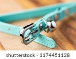 a light blue cat collar with...   Shutterstock . vector #1174451128