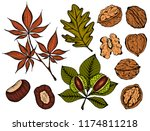 vector illustration of set ink... | Shutterstock .eps vector #1174811218