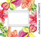 frames for congratulation with ... | Shutterstock . vector #1174966072