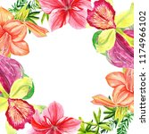 frames for congratulation with ... | Shutterstock . vector #1174966102