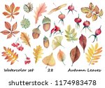 big watercolor set with autumn... | Shutterstock . vector #1174983478