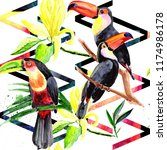 beautiful birds toucans on a...   Shutterstock . vector #1174986178