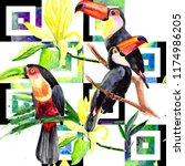 beautiful birds toucans on a...   Shutterstock . vector #1174986205