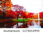 beautiful lake with leaves... | Shutterstock . vector #1175013955