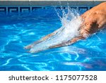 the man jumps in the to... | Shutterstock . vector #1175077528