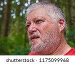 portrait of an elderly ... | Shutterstock . vector #1175099968