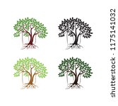 Mangrove Tree Vector...