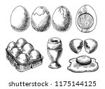 set of eggs drawings. hand...   Shutterstock .eps vector #1175144125