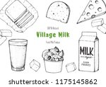 dairy produce hand drawn vector ... | Shutterstock .eps vector #1175145862