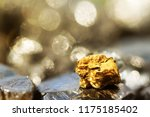 Golden Bar On Raw Coal Nuggets...