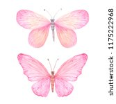 Set Of Pink Bright Watercolor...