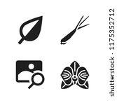 flora icon. 4 flora vector...   Shutterstock .eps vector #1175352712