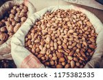 various seeds for sale in a... | Shutterstock . vector #1175382535
