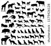 big set wild  house animal | Shutterstock .eps vector #1175426128