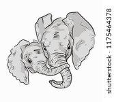 cute illustration of elephant... | Shutterstock .eps vector #1175464378