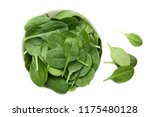 spinach leafs in bowl isolated... | Shutterstock . vector #1175480128