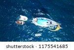 aerial drone birds eye view of... | Shutterstock . vector #1175541685