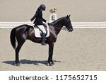young elegant rider woman and... | Shutterstock . vector #1175652715