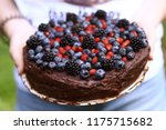 birthday cake for 17 year old... | Shutterstock . vector #1175715682