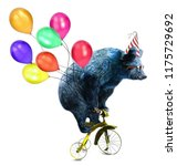 Stock photo cute bear circus show illustration performance of the bear on bike t shirt graphics funny cartoon 1175729692