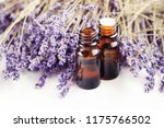 dropper bottle of lavandula... | Shutterstock . vector #1175766502