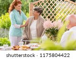 a tender caretaker assisting an ... | Shutterstock . vector #1175804422