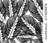 leaves of houseplant maranta... | Shutterstock . vector #1175858878