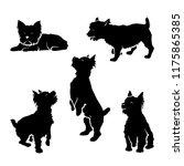 set of yorkshire terrier... | Shutterstock .eps vector #1175865385