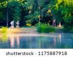 a scenic view of the park with... | Shutterstock . vector #1175887918