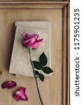 faded pink rose and vintage... | Shutterstock . vector #1175901235