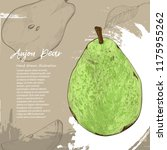 aujon pear. illustration of... | Shutterstock .eps vector #1175955262