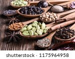different types of whole indian ... | Shutterstock . vector #1175964958