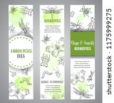 bugs insects hand drawn banner. ... | Shutterstock . vector #1175999275