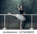 The Classic Ballet Dancer In...